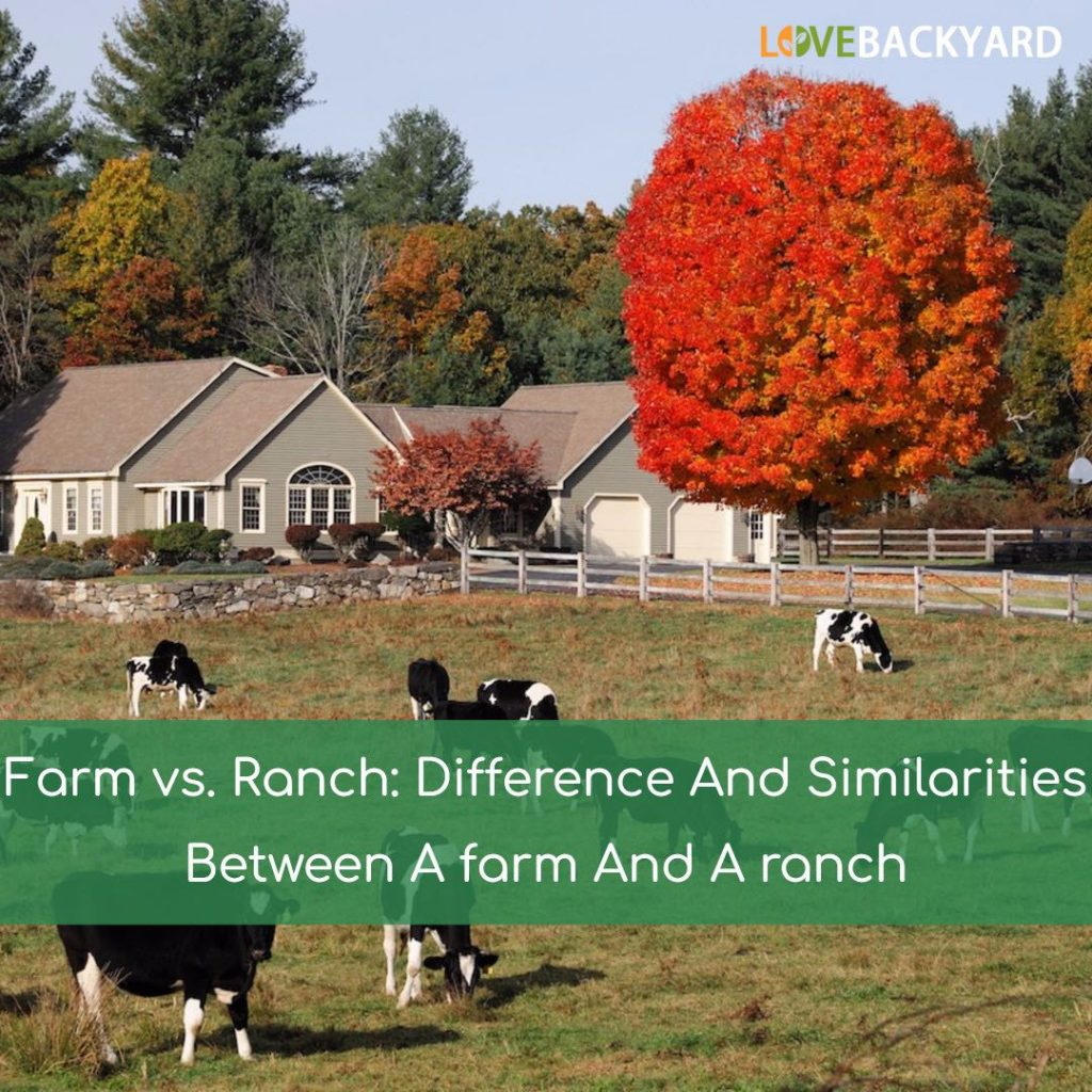 farm vs ranch