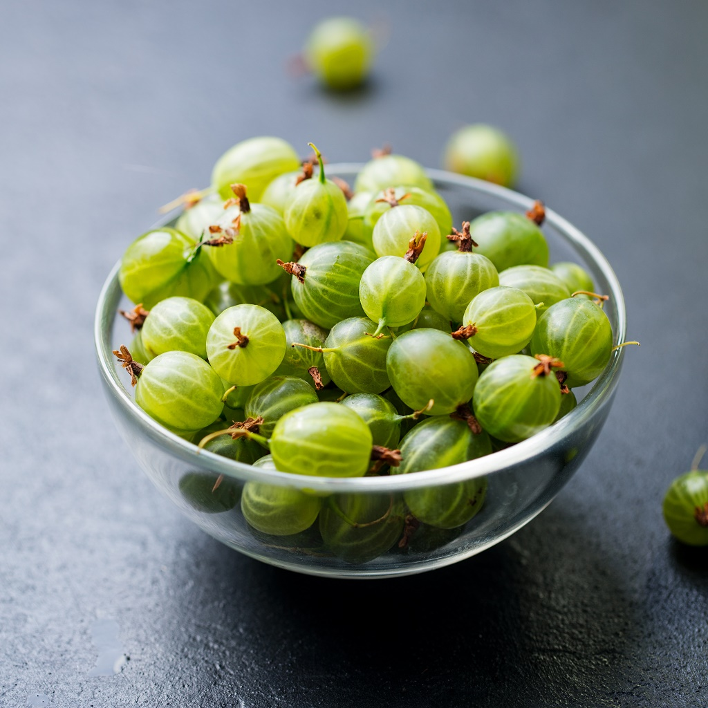 american gooseberries