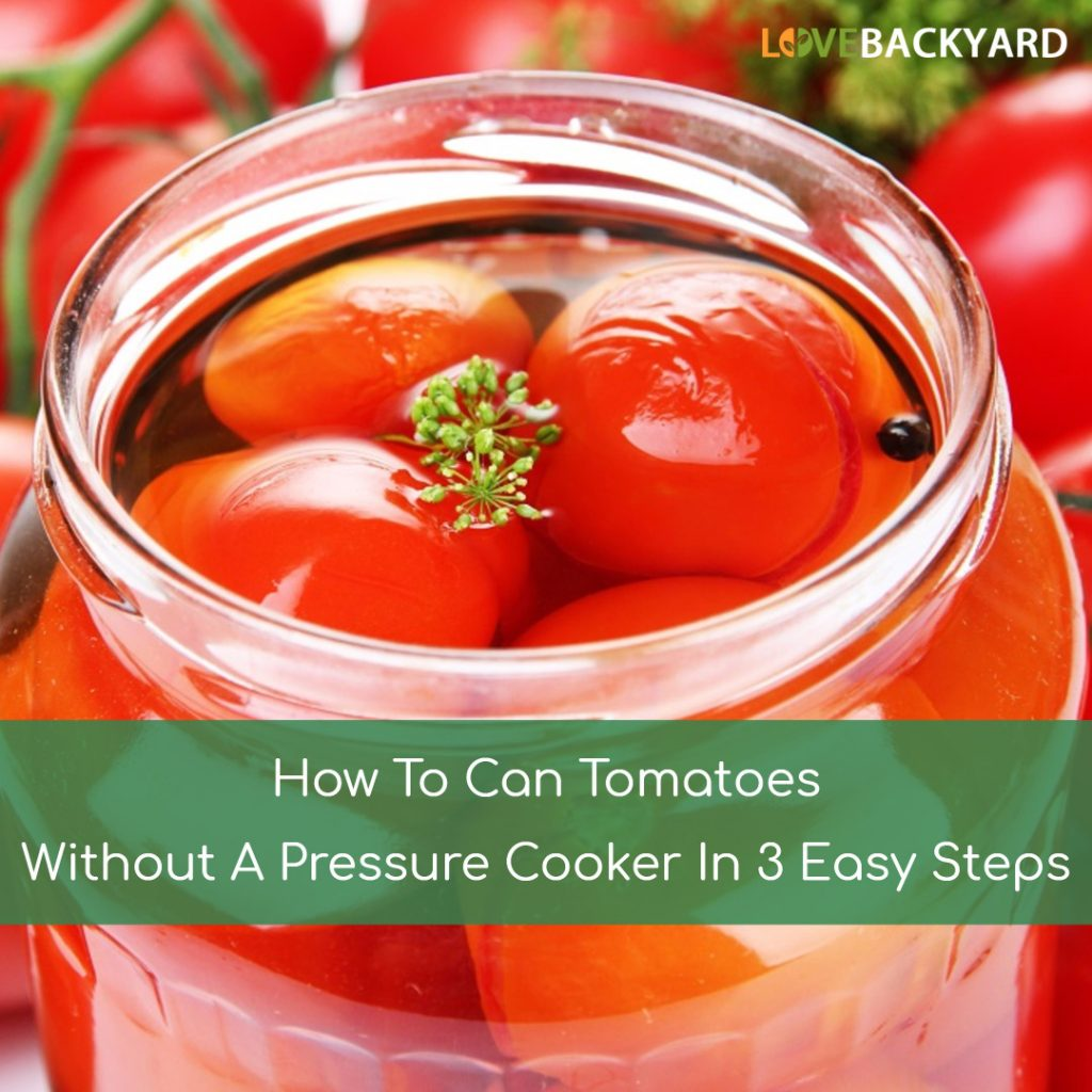 How To Can Tomatoes Without A Pressure Cooker