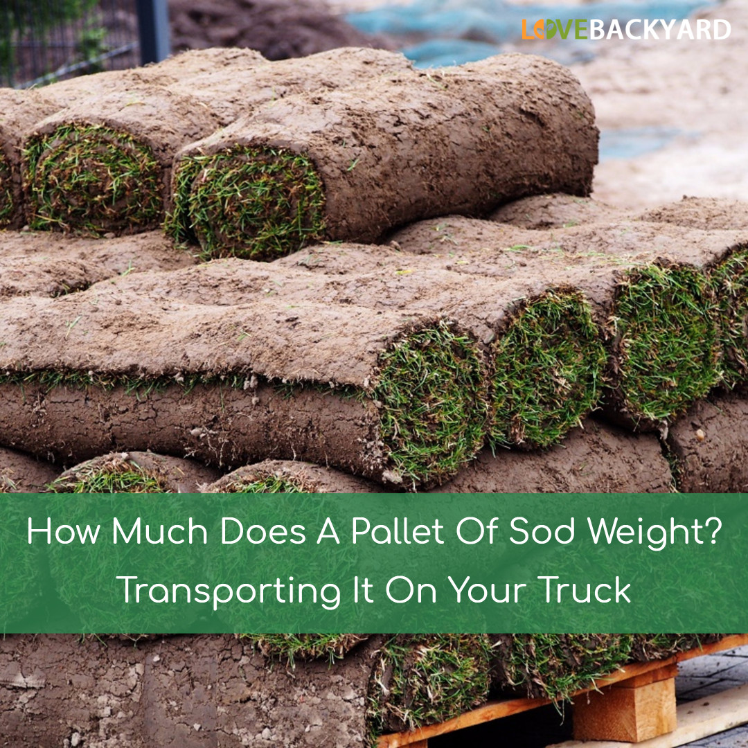 How Much Does A Pallet Of Sod Weight? Transporting It On
