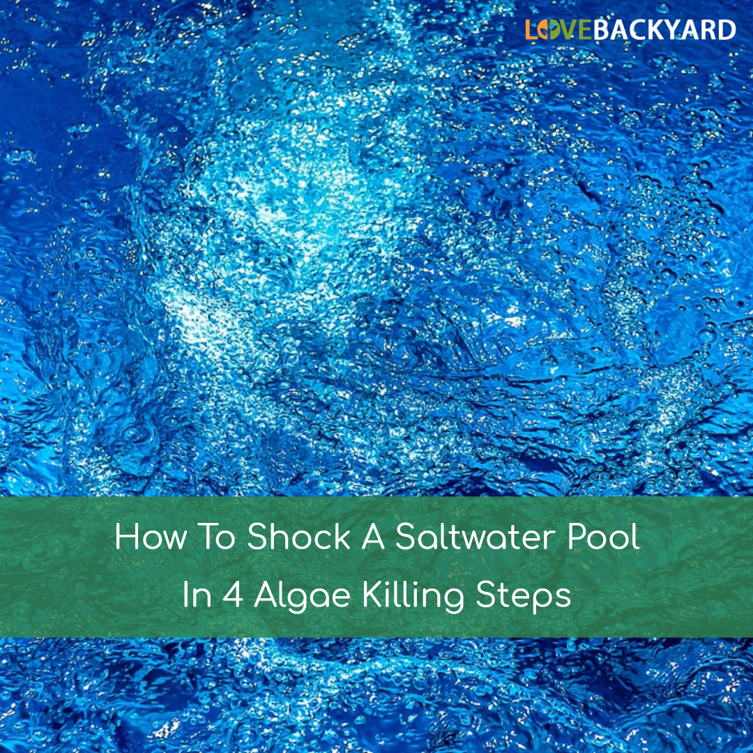How To Shock A Saltwater Pool In 4 Algae Killing Steps Jul 2018
