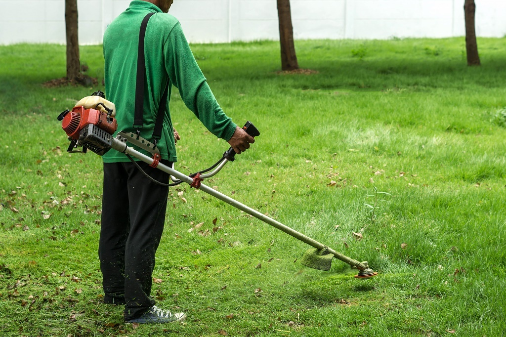 a weed whacker in action