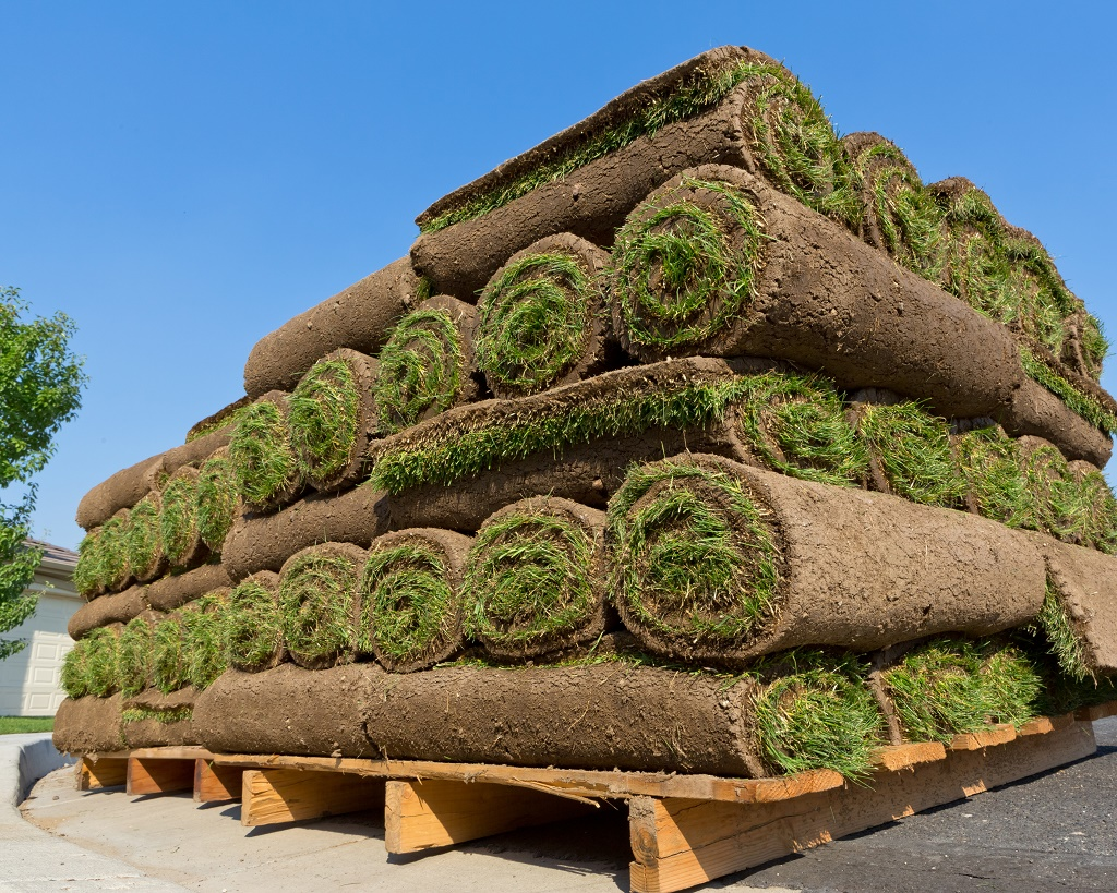 giant pile of sod