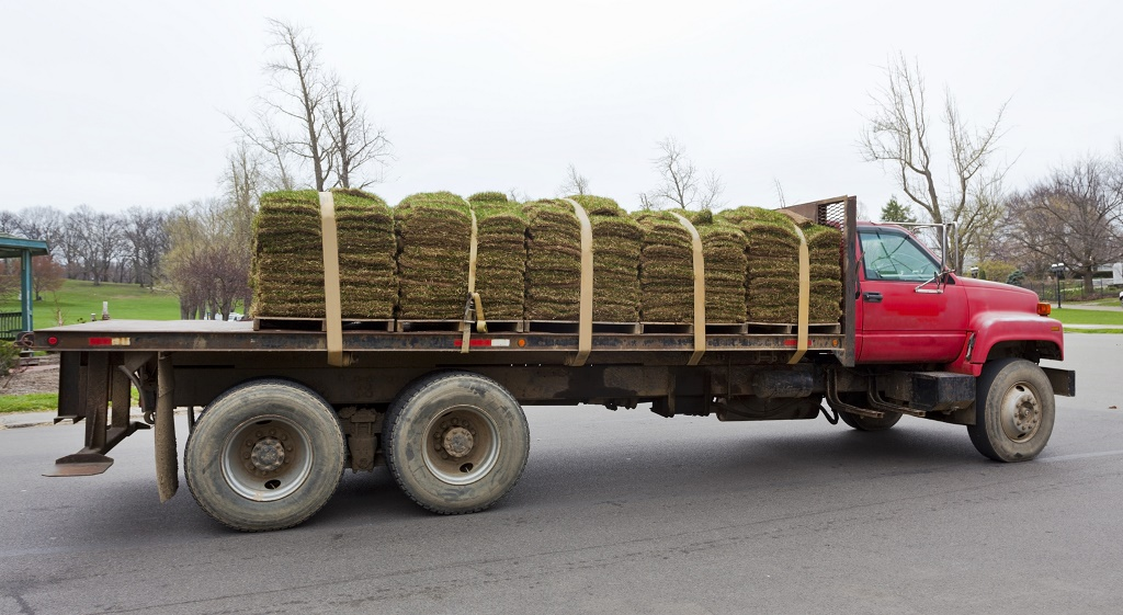truck carries turf