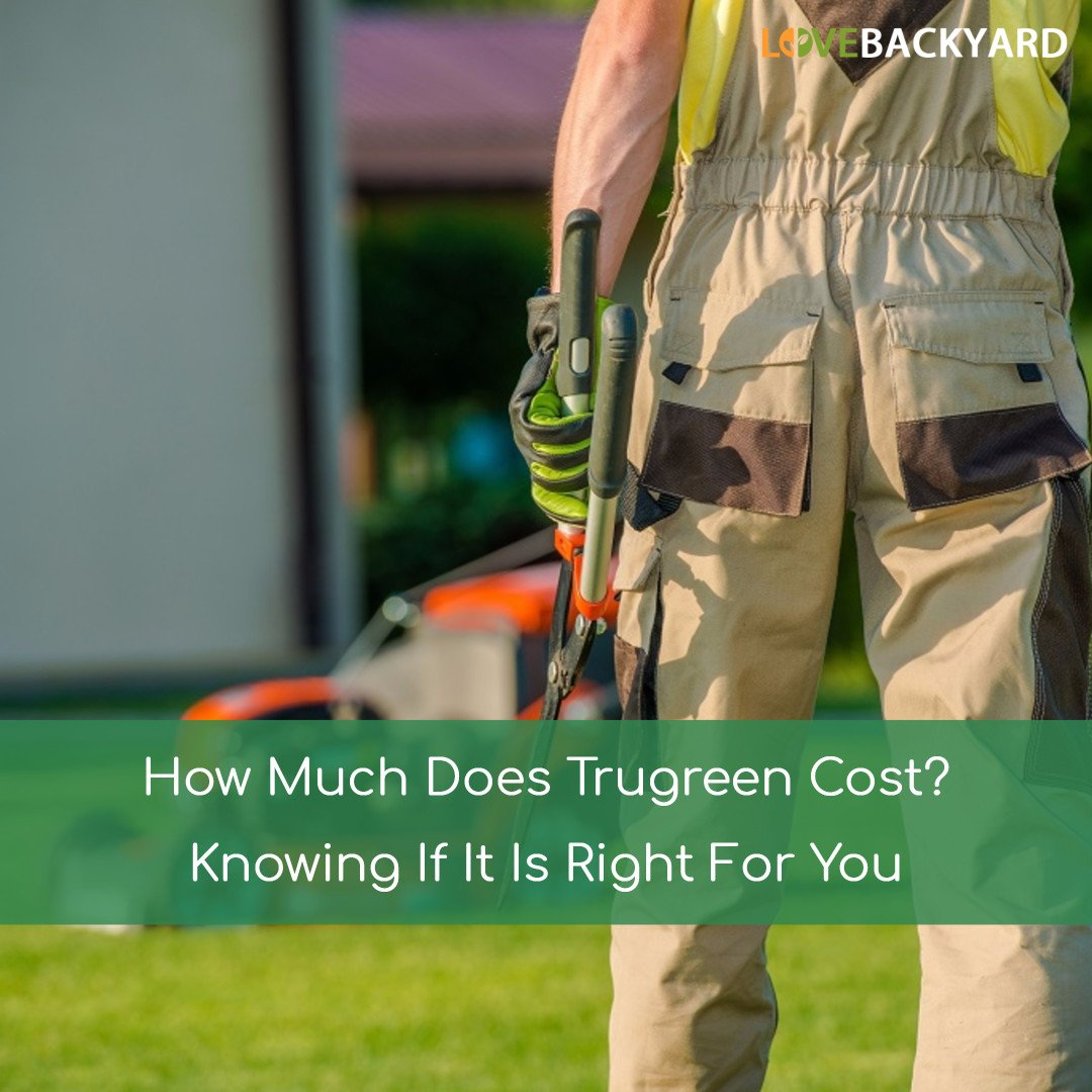 How Much Does Trugreen Cost Knowing If It Is Right For You Sep 2020