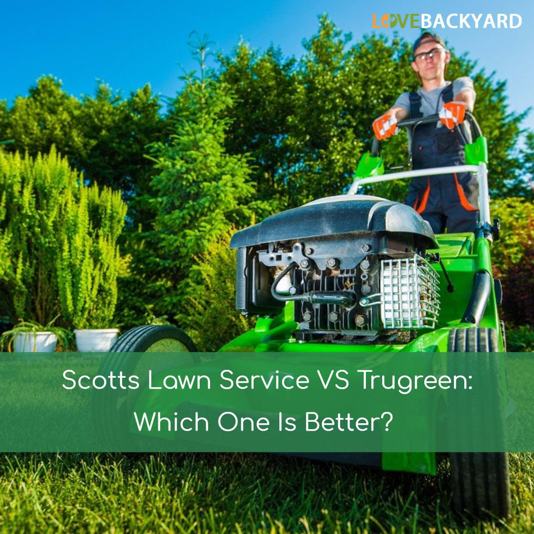 Scotts Lawn Service Vs Trugreen Which One Is Better Oct