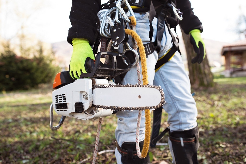 wearing protective gloves holding chainsaw
