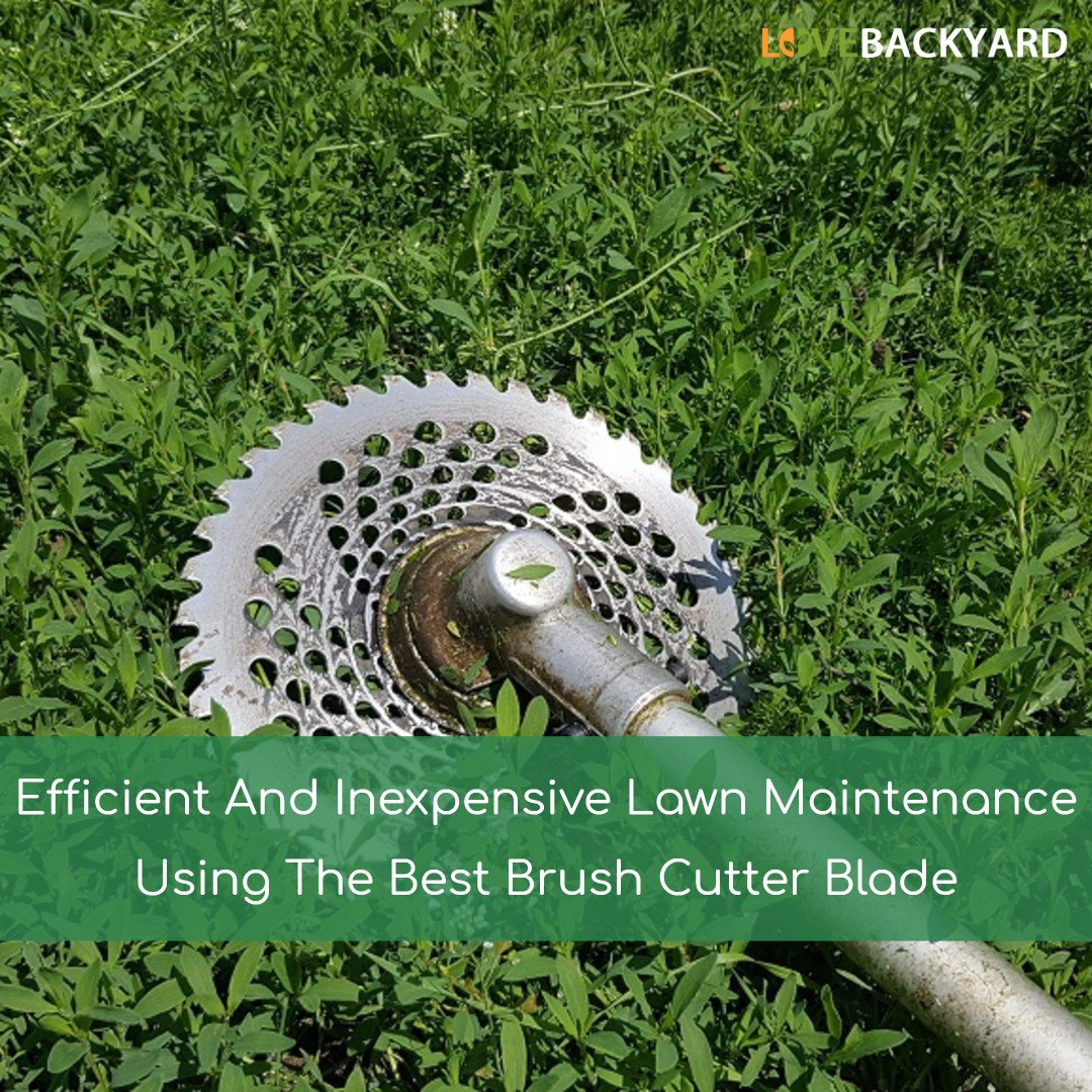 The 5 Best Bush Cutter Blades Reviews Amp Ratings Nov 2019