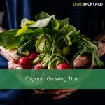 Organic Growing Tips