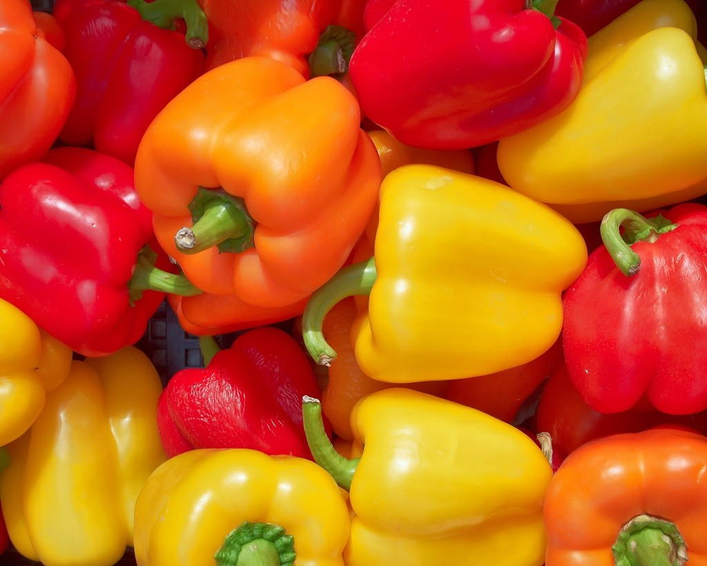 bell pepper background