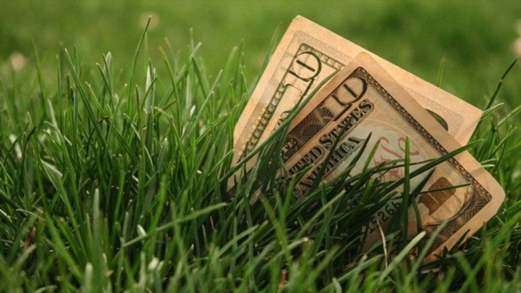 Fertilizing Tips for Your Healthiest Lawn Ever