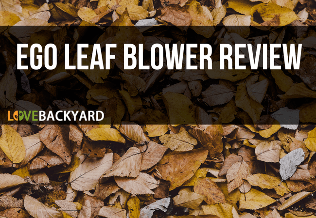 Ego Leaf Blower Review