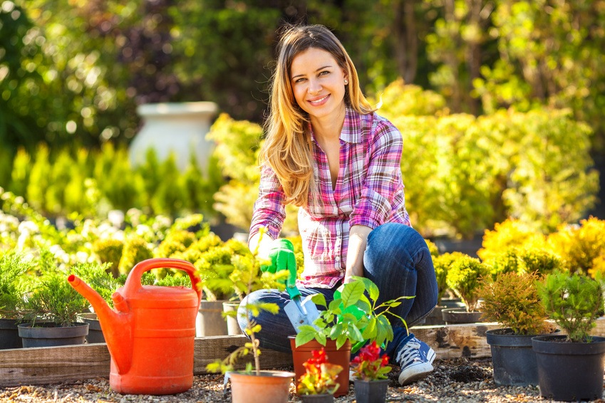 Horticulture and Botany