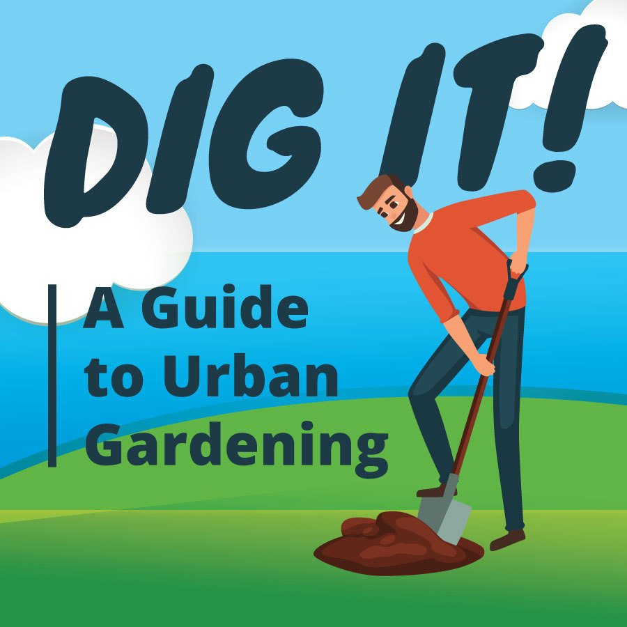 Dig it A Guide To Urban Gardening Featured Image