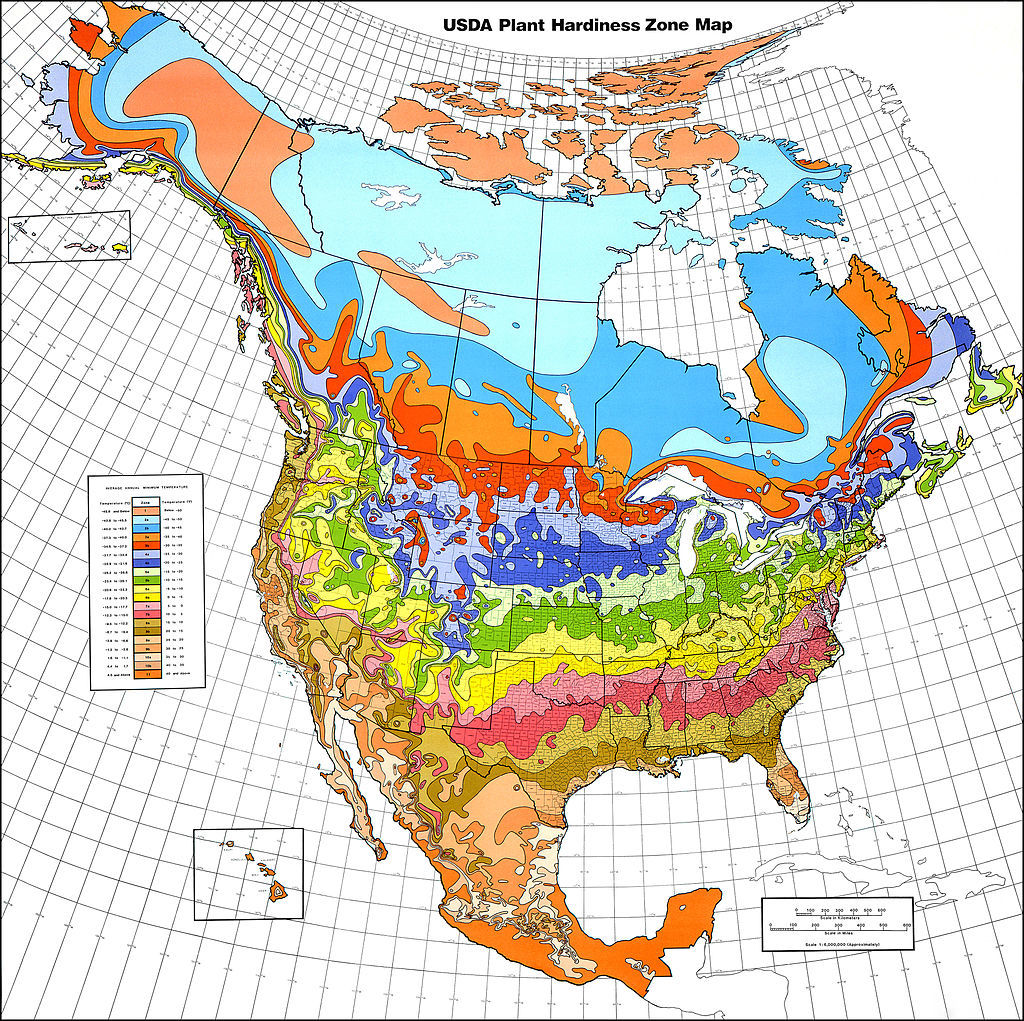 USDA Hardiness zone for landscaping ideas
