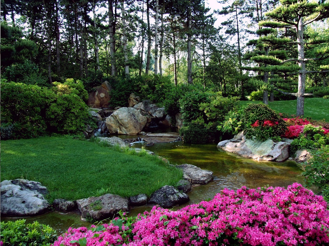 beautiful garden with green grass and pink flowers
