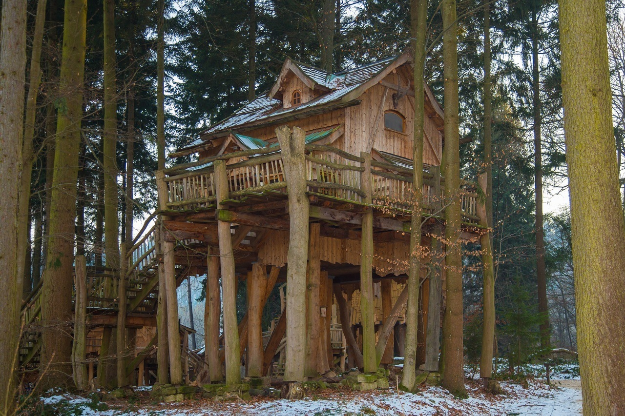 One of the best treehouse rentals in the US.